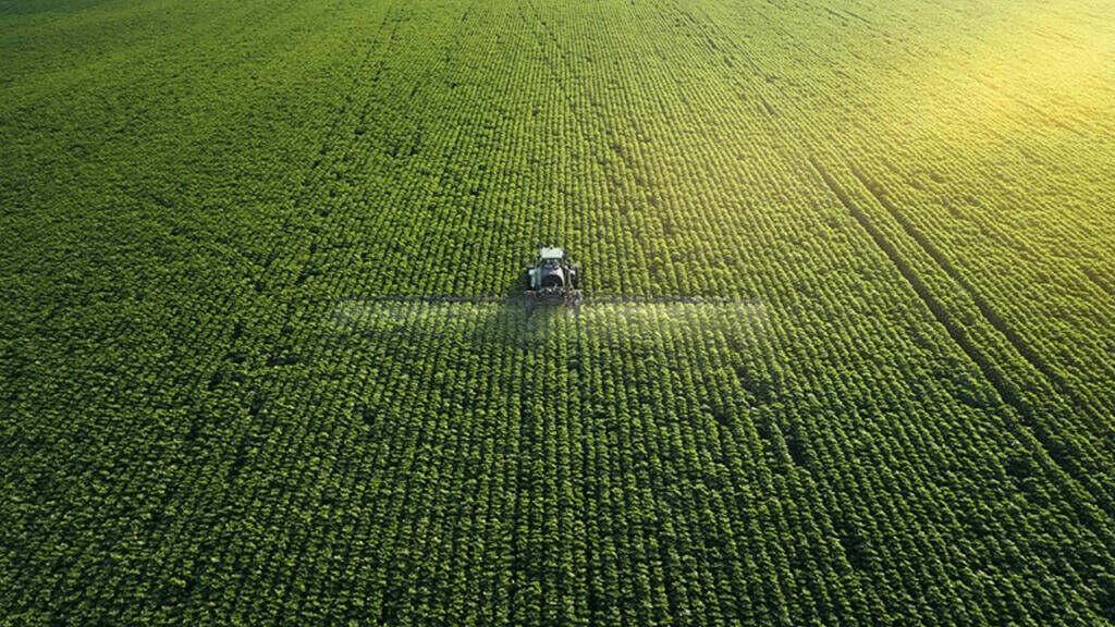 fertilizantes a base de óxidos na estiagem