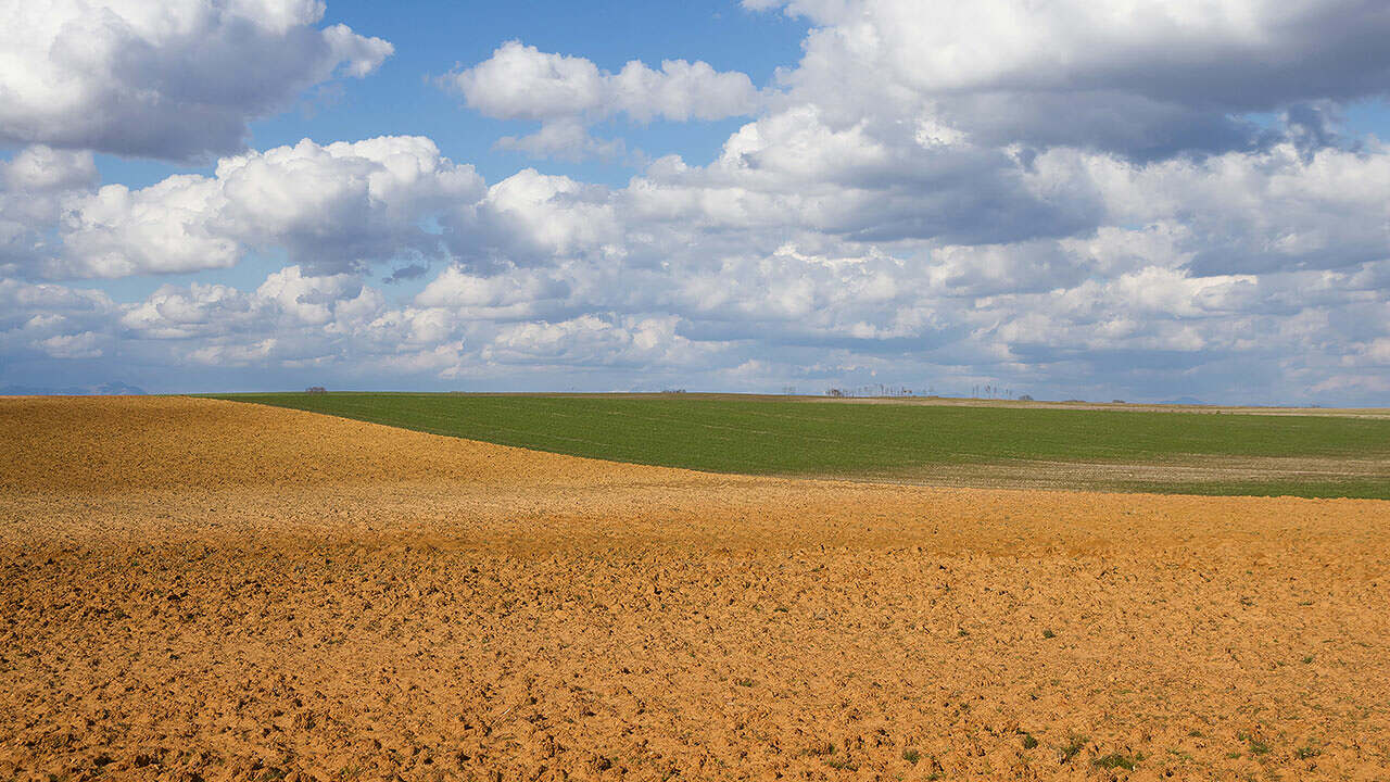 Avaliação da aplicação de Fertimacro FX 170 na produção de soja em solo de textura muito argilosa no Noroeste do Paraná