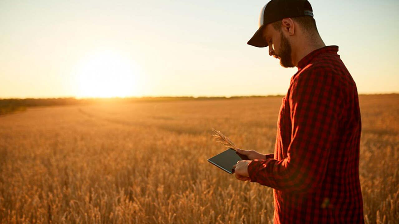 13 de setembro – Dia Mundial do Agrônomo: confira a importância desta profissão para o país