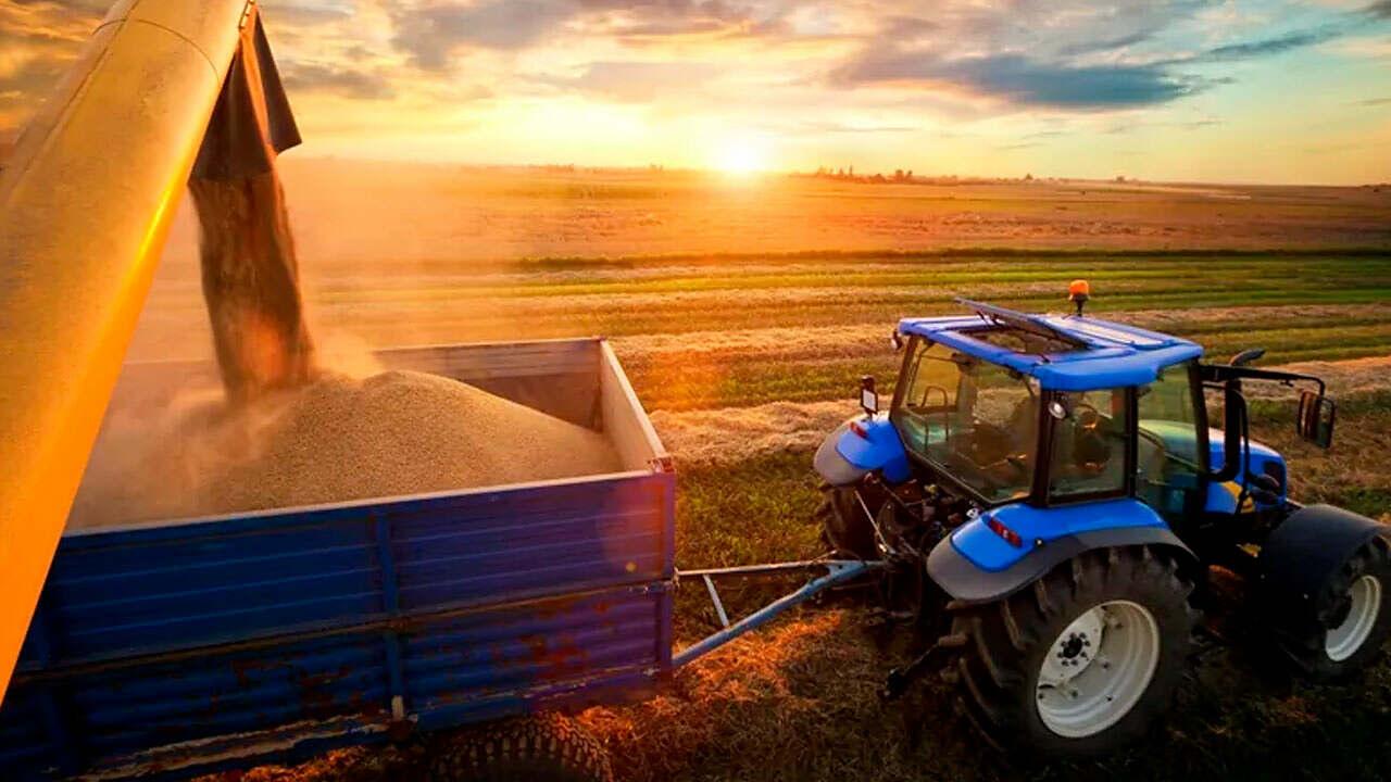 Produção de grãos no Brasil